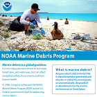 Marine Debris Program Fact Sheet